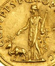Image de chameau sur une monnaie romaine de Trajan