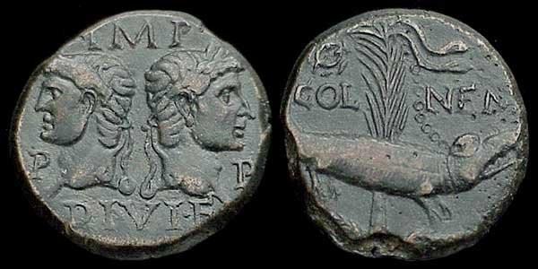 n°17. As de Nîmes, frappé vers 10-14 ap. J.C. A/ IMP DIVI F PP. R/ COL-NEM, crocodile enchaîné à un palmier