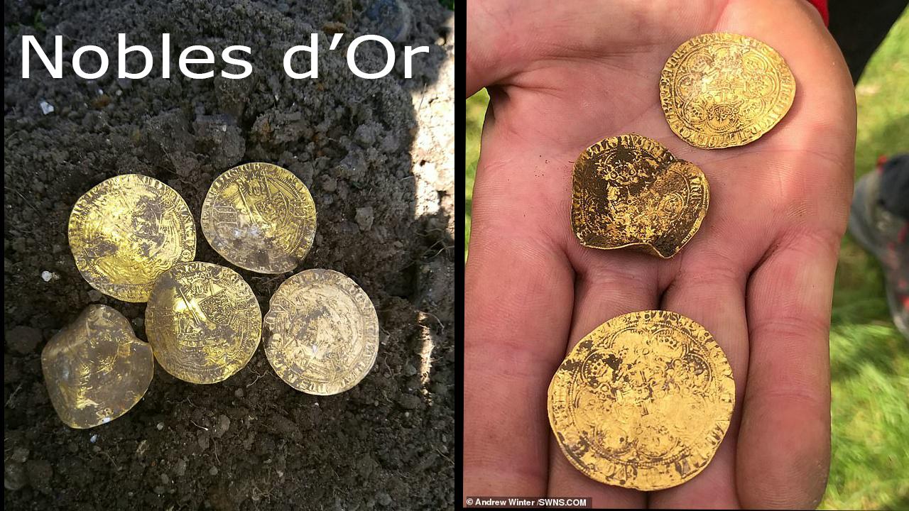 Le trésor contient 12 Nobles d'or, des pièces extrêmement rares